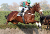 Grand National Odds: Ucello Conti