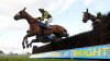 Grand National Odds: The Last Samuri