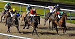 Wolverhampton Tip Lightscameraction