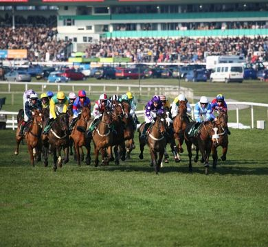 racetrack betting terms