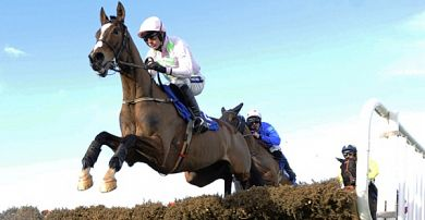 Supreme Novices' Hurdle Trends