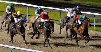 Horse Racing Tips - Betting Bias
