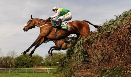 Betting Offers for the Grand National 2016