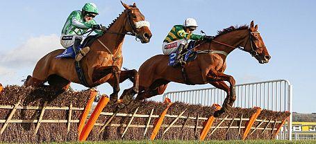Cheltenham Festival: Bet365 Best Odds Guaranteed & Non-runner No-bet