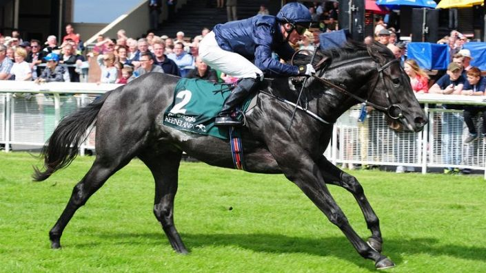 Commonwealth Cup Tips: Caravaggio