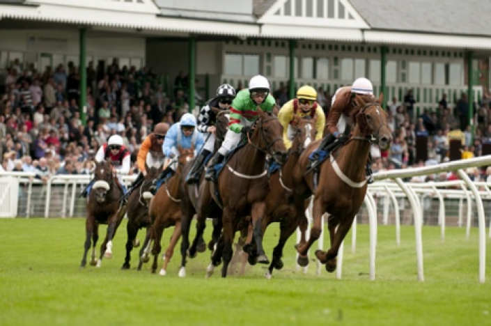 Catterick Tips: Elusivity
