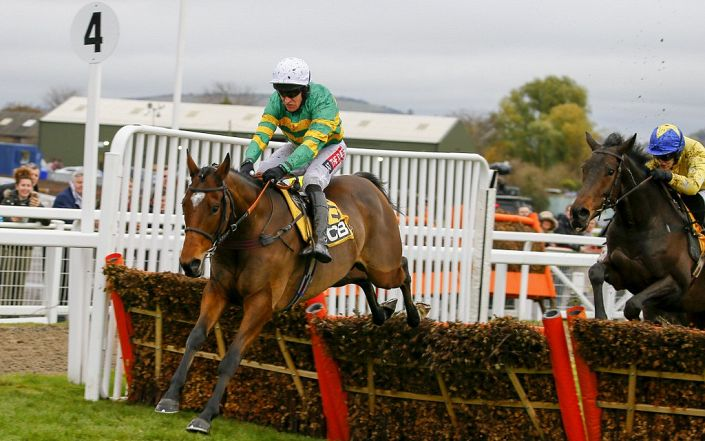 Champion Chase Trends