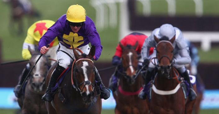 Grand National Odds: Lord Windermere