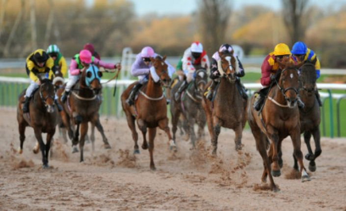 Southwell Tips: African Blessing