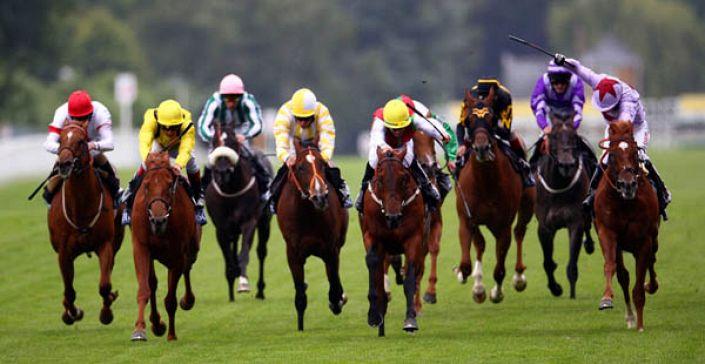 Britannia Stakes Tips: Sabador