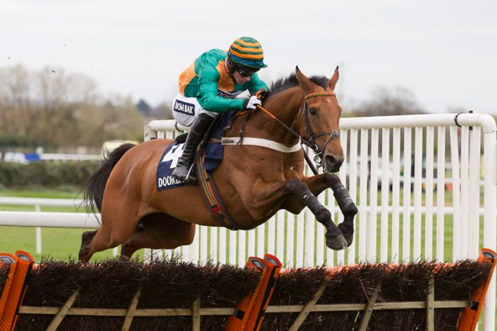 Stayers' Hurdle Trends