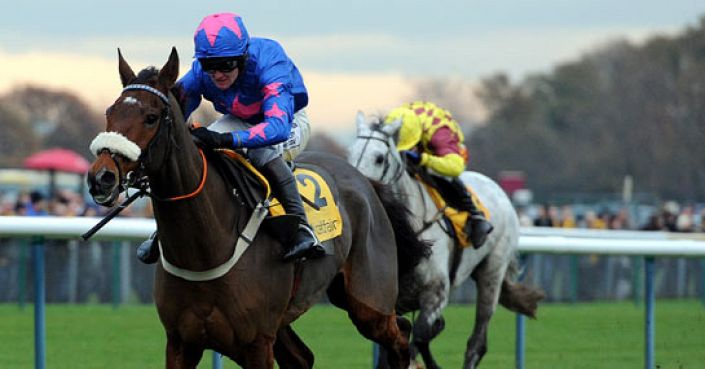 Cue Card enhanced to 20/1 Gold Cup - Paddy Power