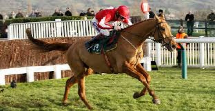 Double Ross Odds – Grand National Guide