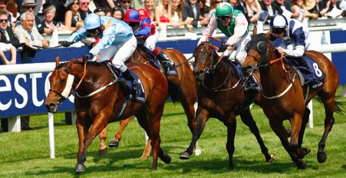 Epsom Dash Tips: Excessable