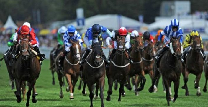 Goodwood Tips: Billesdon Brook