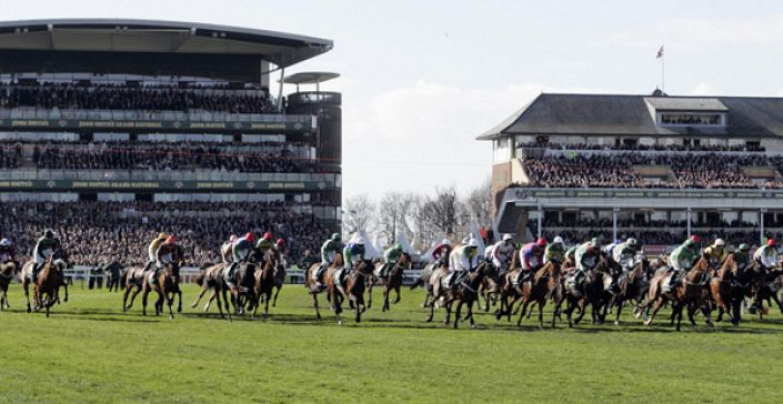 Grand National Runners & Riders