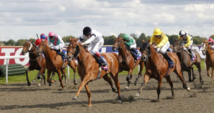 Kempton Tip: Magic Purse