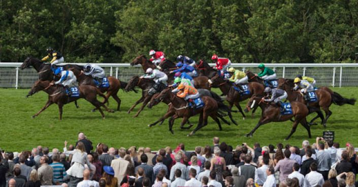 Stewards' Cup Tip: Polybius