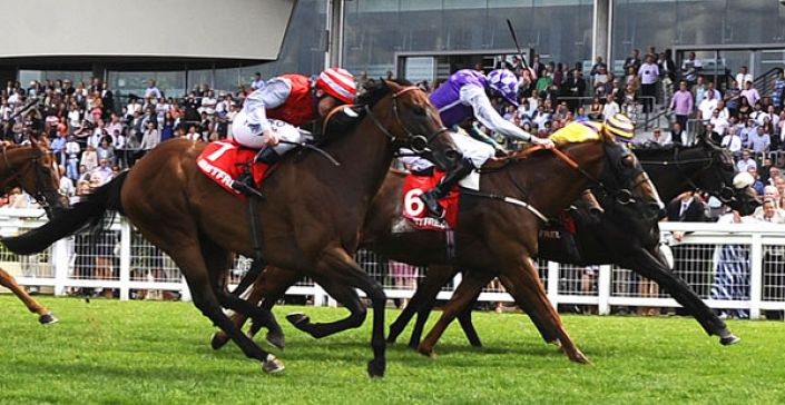Lingfield Tips: Picansort