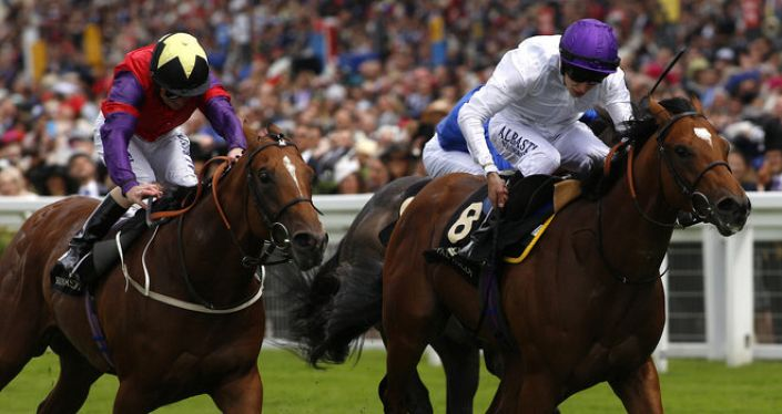 Goodwood Tips: The Last Lion