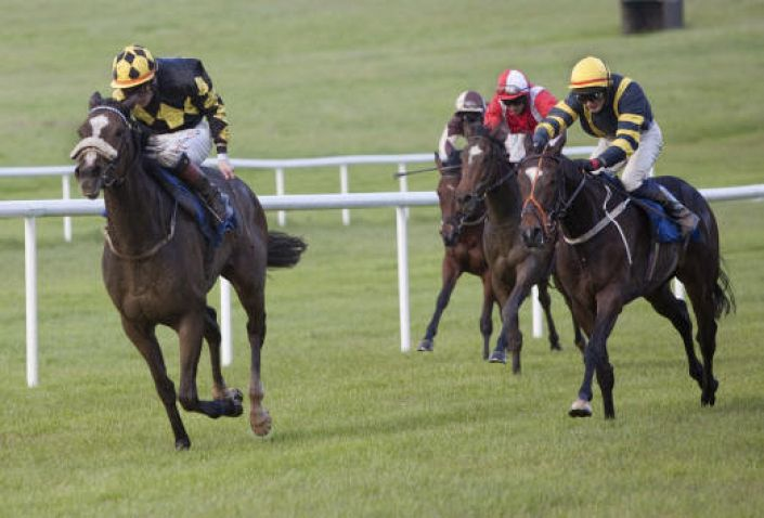 Clonmel Betting Odds and Racecourse Guide