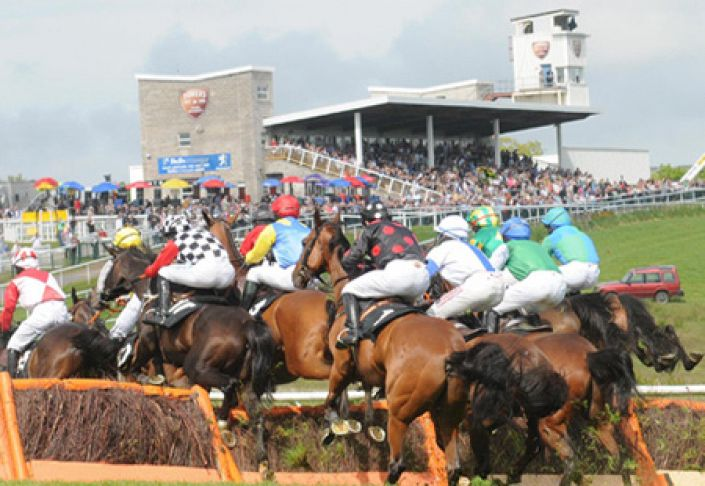 Downpatrick Betting Odds and Racecourse Guide