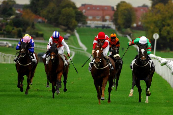 Leicester Betting Odds and Racecourse Guide