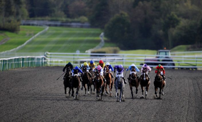 Lingfield Betting Odds and Racecourse Guide