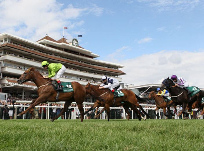 Newbury Betting Odds and Racecourse Guide