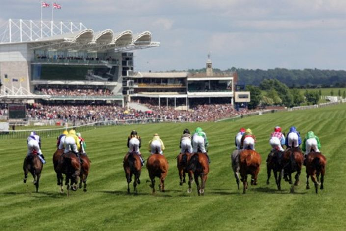 Newmarket Betting Odds and Racecourse Guide