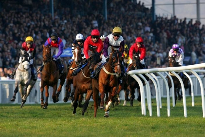 Newton Abbot Betting Odds and Racecourse Guide